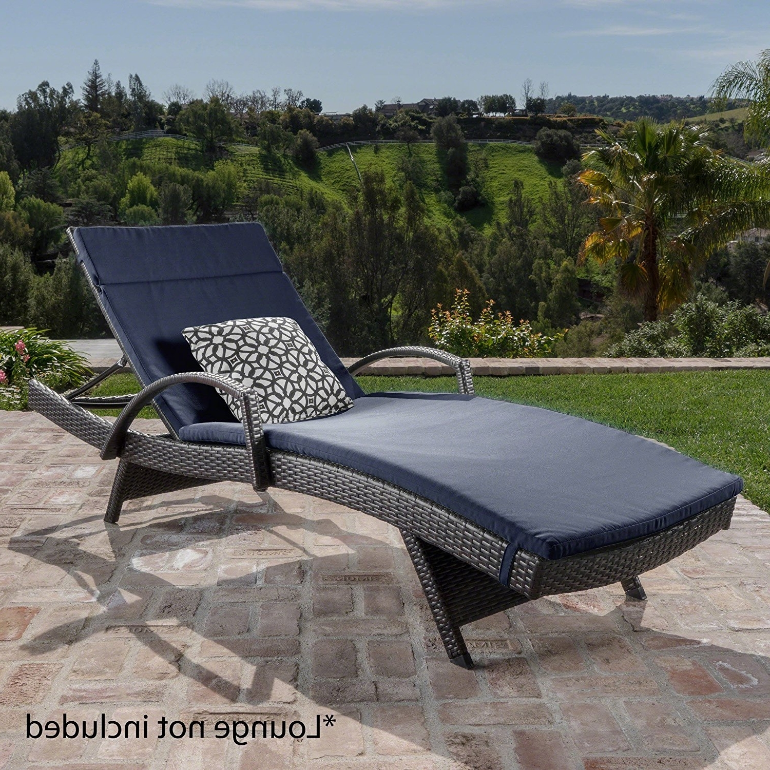2017 Lakeport Outdoor Adjustable Chaise Lounge Chairs For Amazon: Christopher Knight Home 633 Salem Chaise Outdoor (View 9 of 15)
