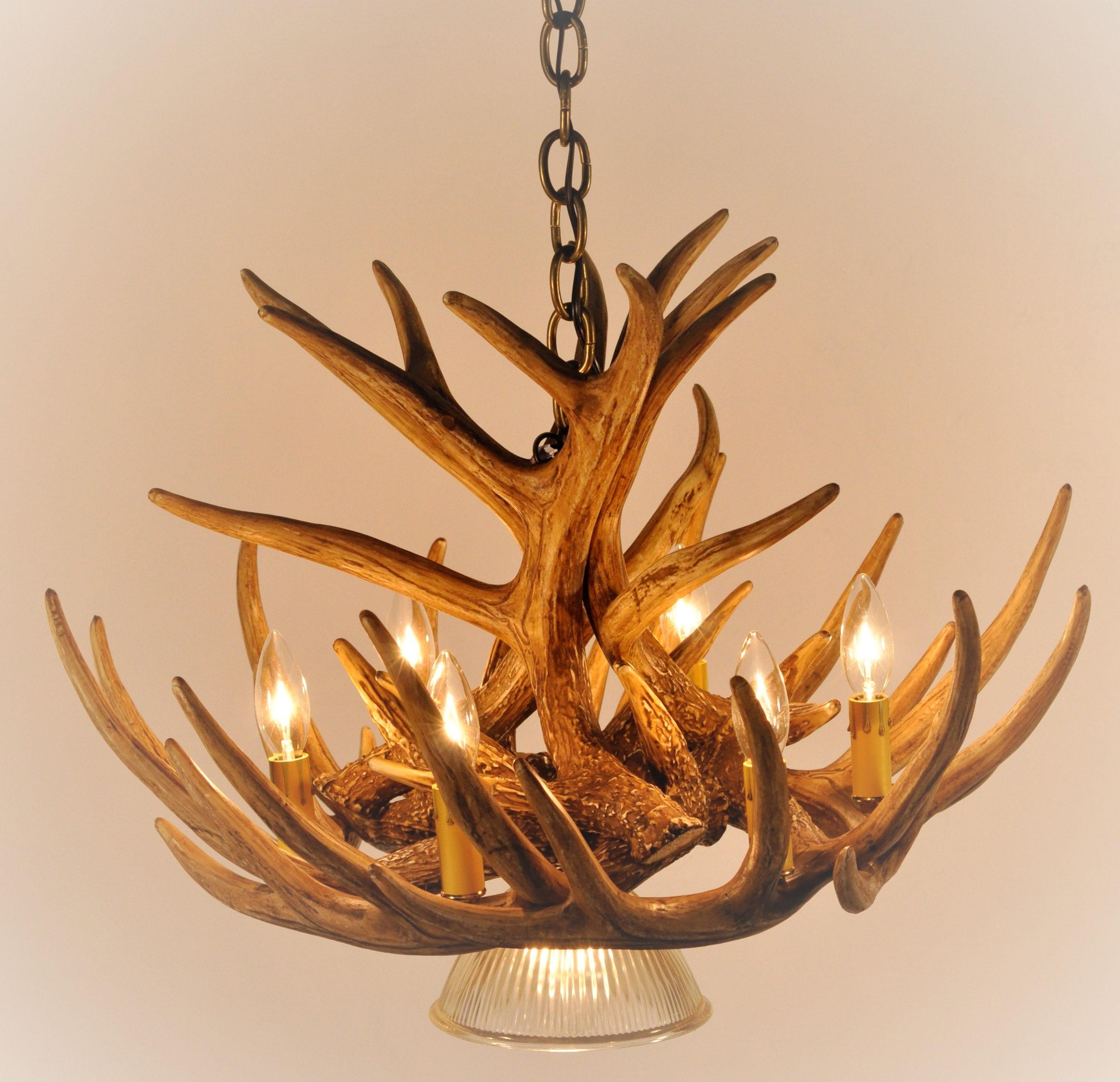 2017 Whitetail Deer 9 Antler Cascade Chandelier With 1 Downlight* – Cast Throughout Antler Chandeliers (View 1 of 15)