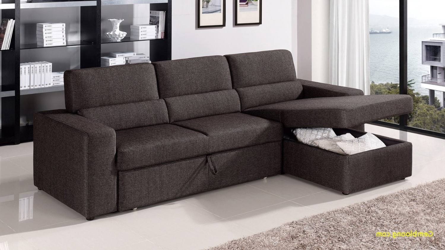 Featured Photo of Sleeper Sofas With Storage Chaise