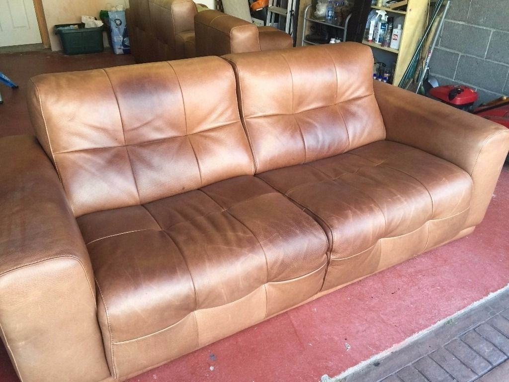 Featured Photo of Aniline Leather Sofas