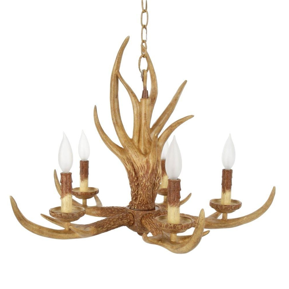 Antler Chandeliers Intended For Best And Newest Hampton Bay 5 Light Natural Antler Hanging Chandelier 17195 – The (View 3 of 15)