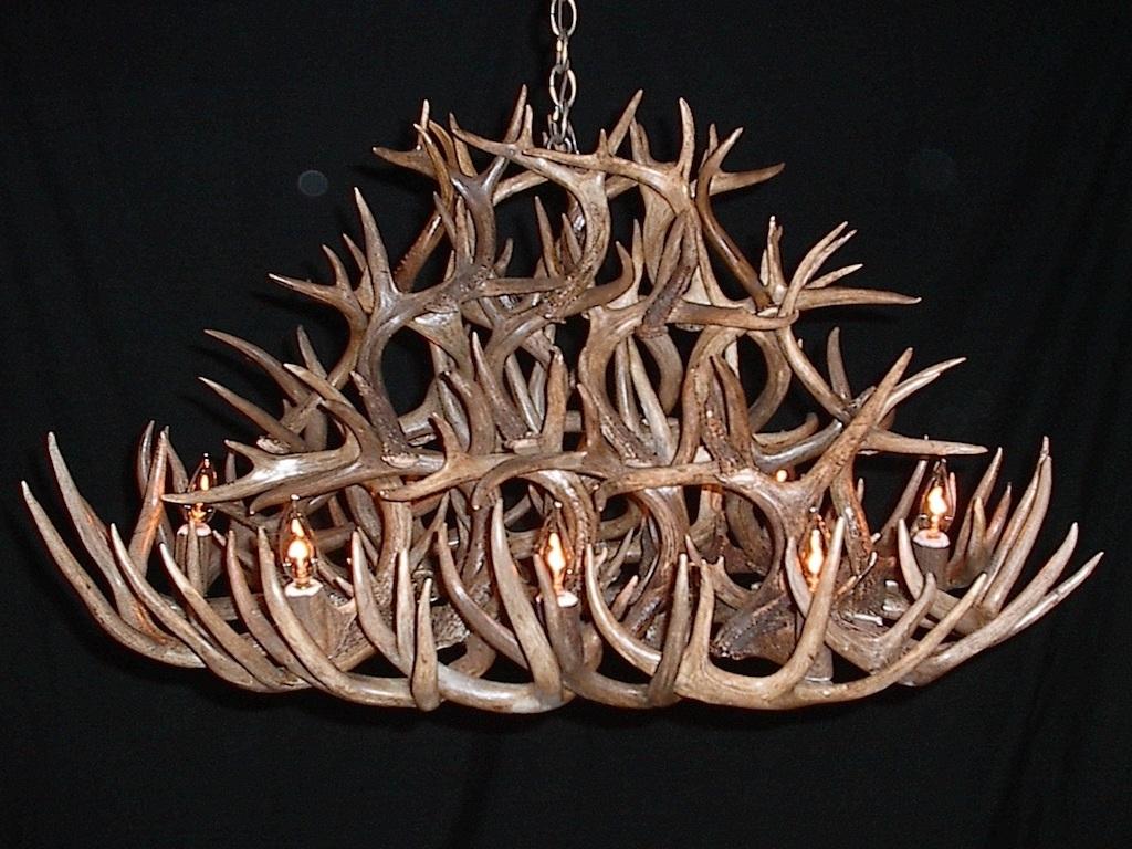 Antler Furniture Antler Chandeliers Antler Lamp Deer Antler Inside 2018 Antler Chandeliers (View 15 of 15)