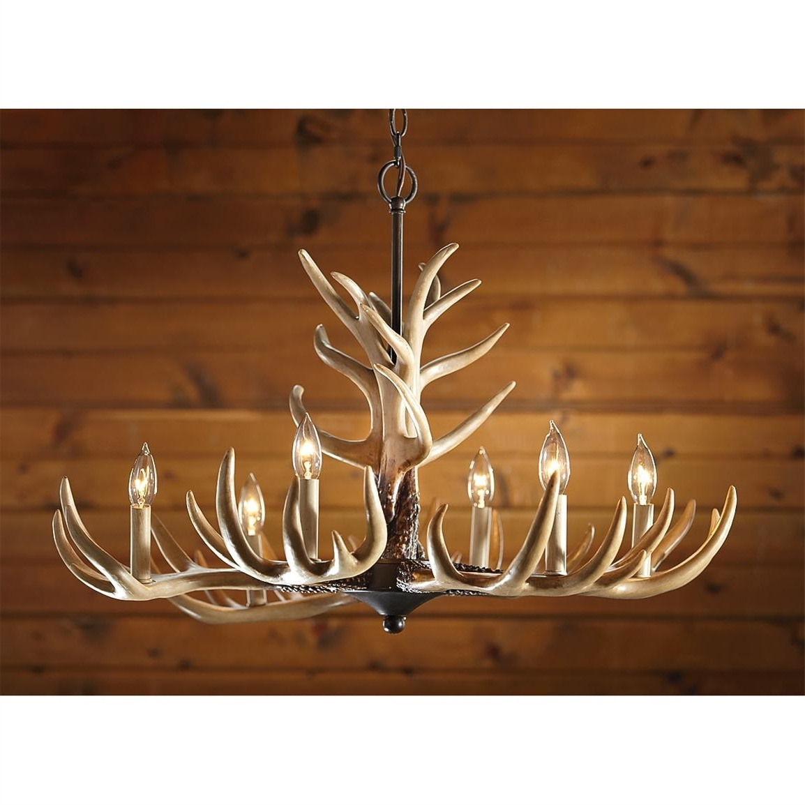 Antlers Chandeliers Within Well Known Castlecreek 6 Light Whitetail Antler Chandelier – 226091, Lighting (View 5 of 15)