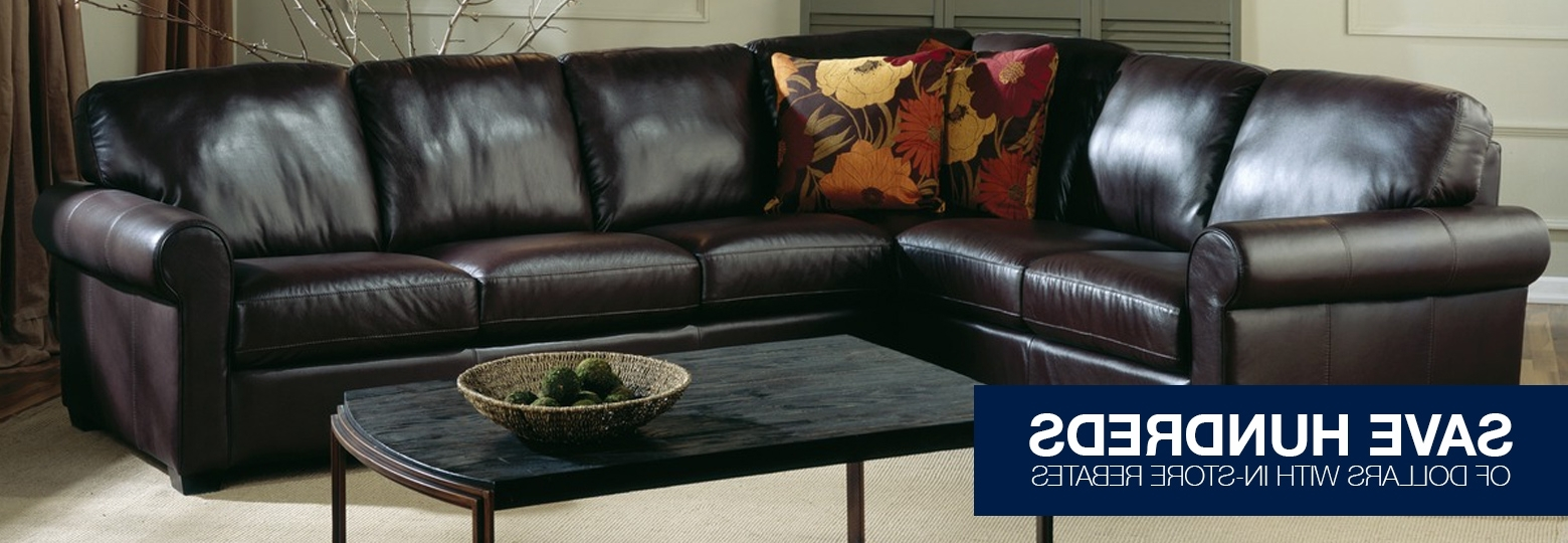 Best And Newest Leather Sectionals (View 15 of 15)