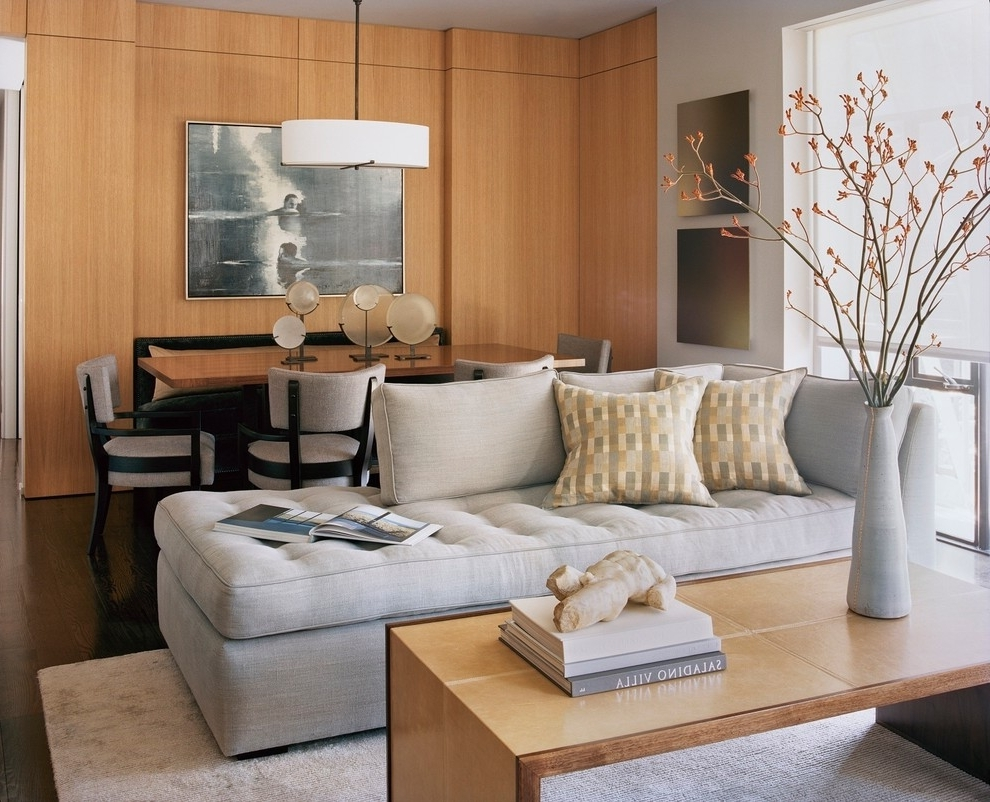 Best And Newest Transitional Ideas For Apartment Size Sectional Sofa – Hupehome Pertaining To Apartment Size Sectionals With Chaise (View 7 of 15)
