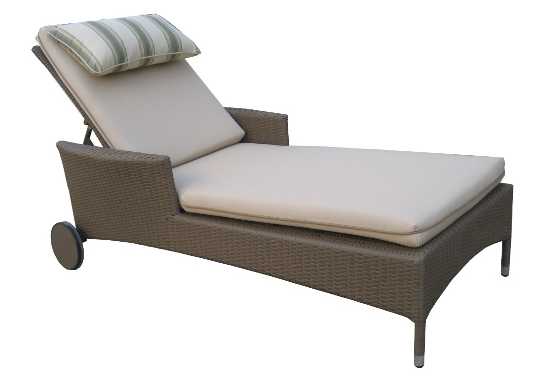 Favorite Perfect Outdoor Chaise Lounge Chairs : Best Outdoor Chaise Lounge Pertaining To High Quality Chaise Lounge Chairs (View 3 of 15)