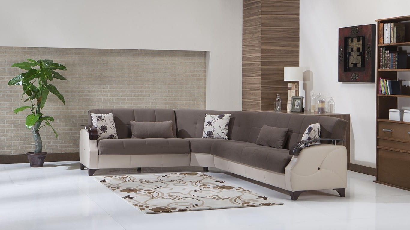 Jacksonville Nc Sectional Sofas With Regard To Trendy Furniture : Mattress Firm Box Spring Sleeper Sofa Denver Sleeper (Gallery 10 of 15)