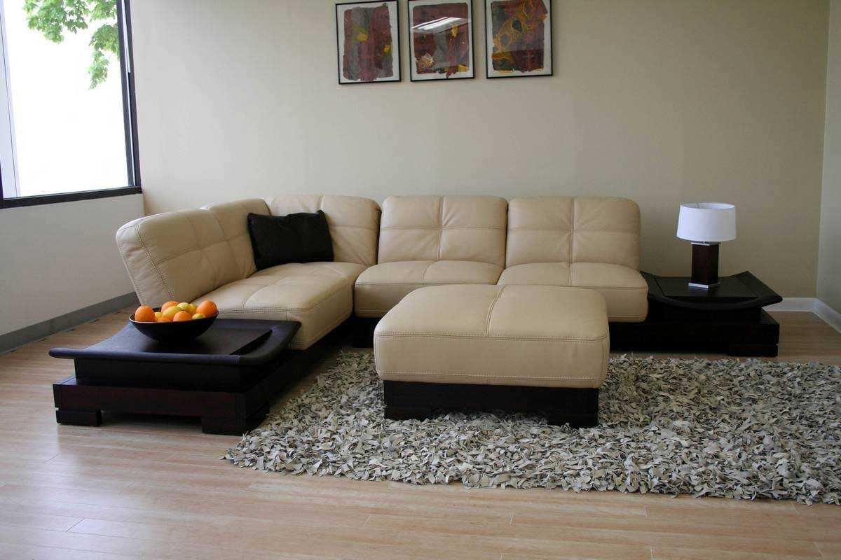 Johnson City Tn Sectional Sofas Within Most Recently Released Thomasville Sectional Sofas Style — Fabrizio Design : Thomasville (Gallery 15 of 15)