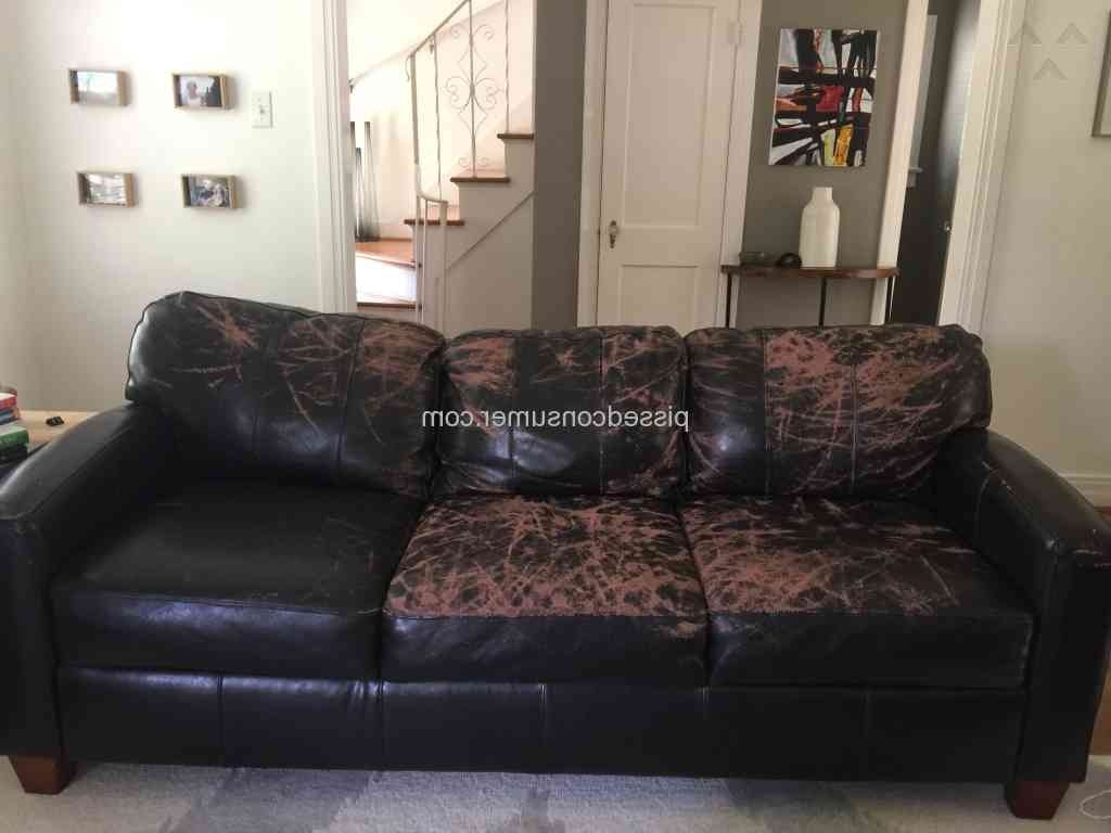 Latest Jennifer Convertibles – Peeling 'leather ' Sofa Dec 28, 2016 Inside Jennifer Convertibles Sectional Sofas (View 7 of 15)