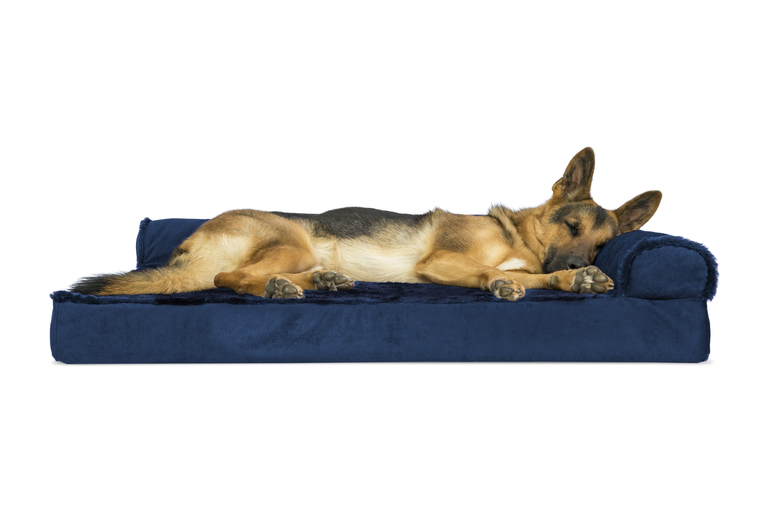 Latest Plush & Velvet Deluxe Chaise Lounge Orthopedic Sofa Style Pet Bed Pertaining To Dog Chaise Lounges (View 5 of 15)