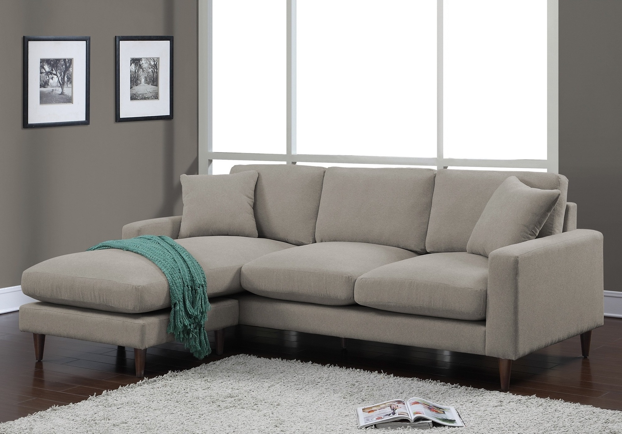 Lovable Sleeper Sofa With Chaise Lounge Alluring Living Room With Regard To Well Liked Target Sectional Sofas (View 7 of 15)