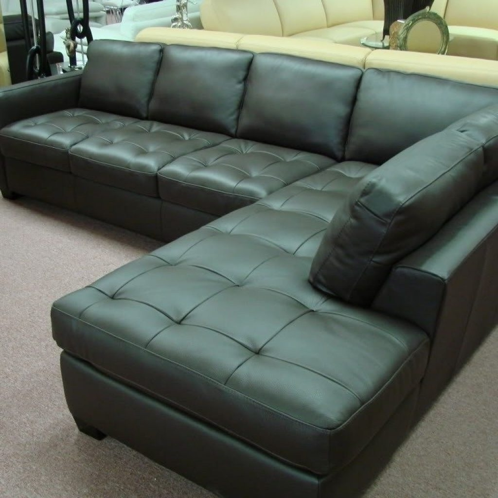 Most Recent Natuzzi Leather Sectional Sleeper Sofa (View 5 of 15)