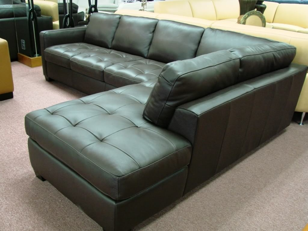 Most Recent Natuzzi Sectional Sofas Regarding Natuzziinterior Concepts Furniture (View 7 of 15)