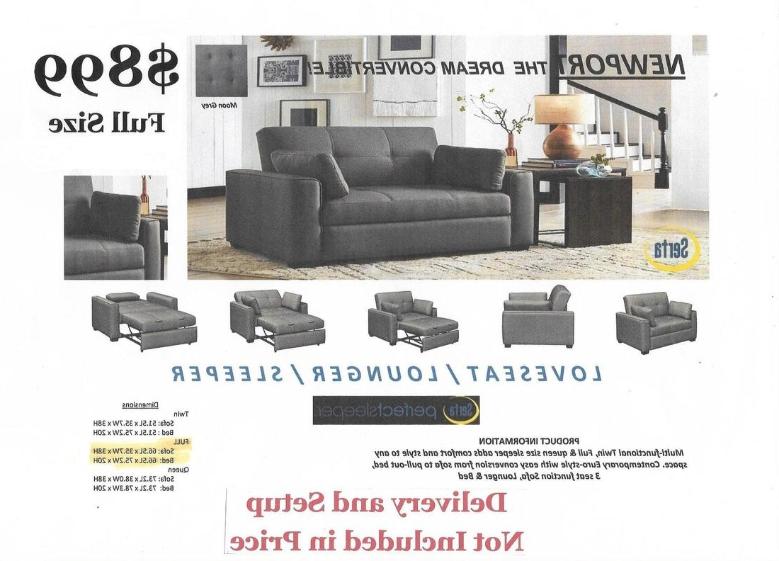 Newport Sofas With Regard To Most Current Convertible Sofas – The Futon Experience (View 13 of 15)