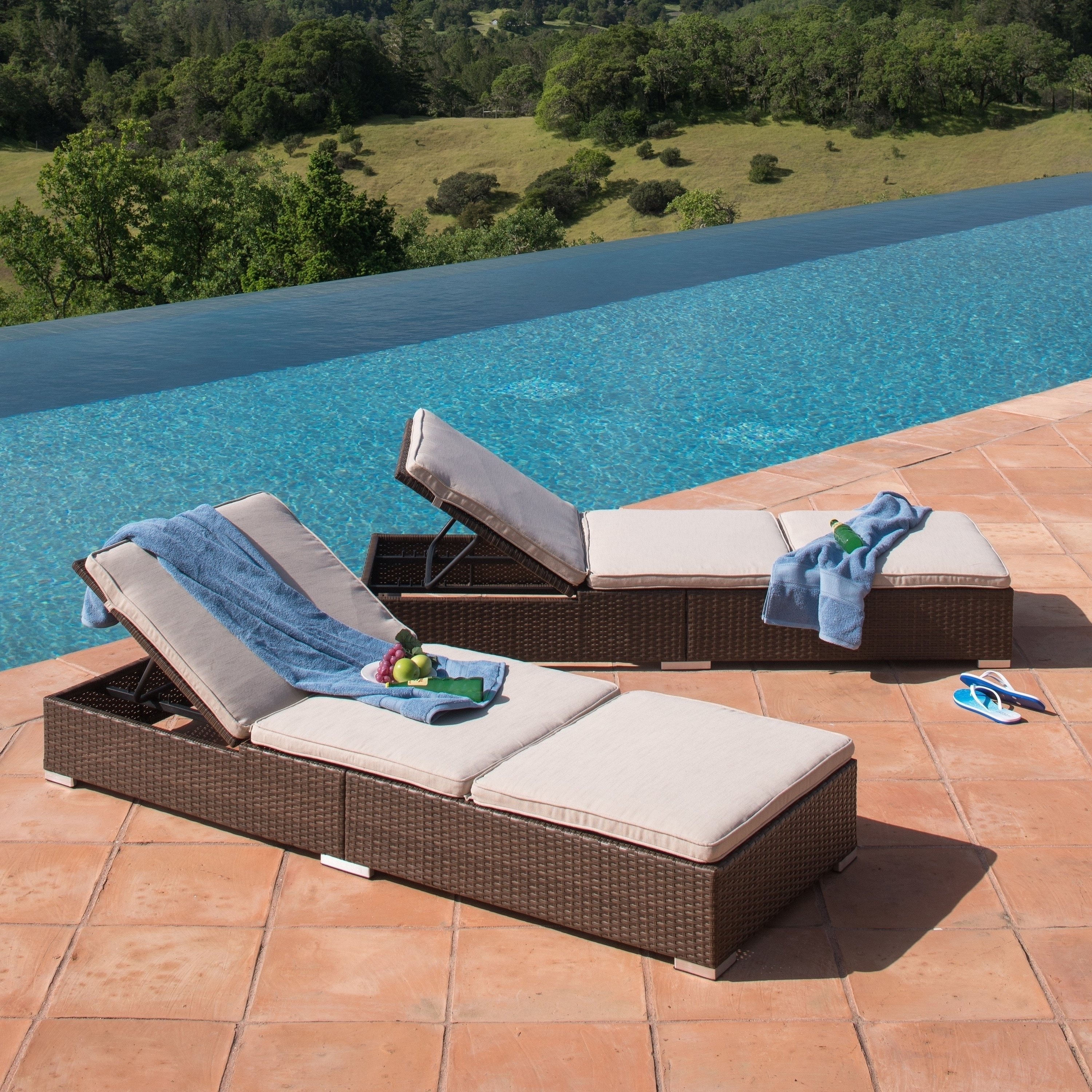Overstock Pertaining To Well Liked Cast Aluminum Chaise Lounges (View 10 of 15)