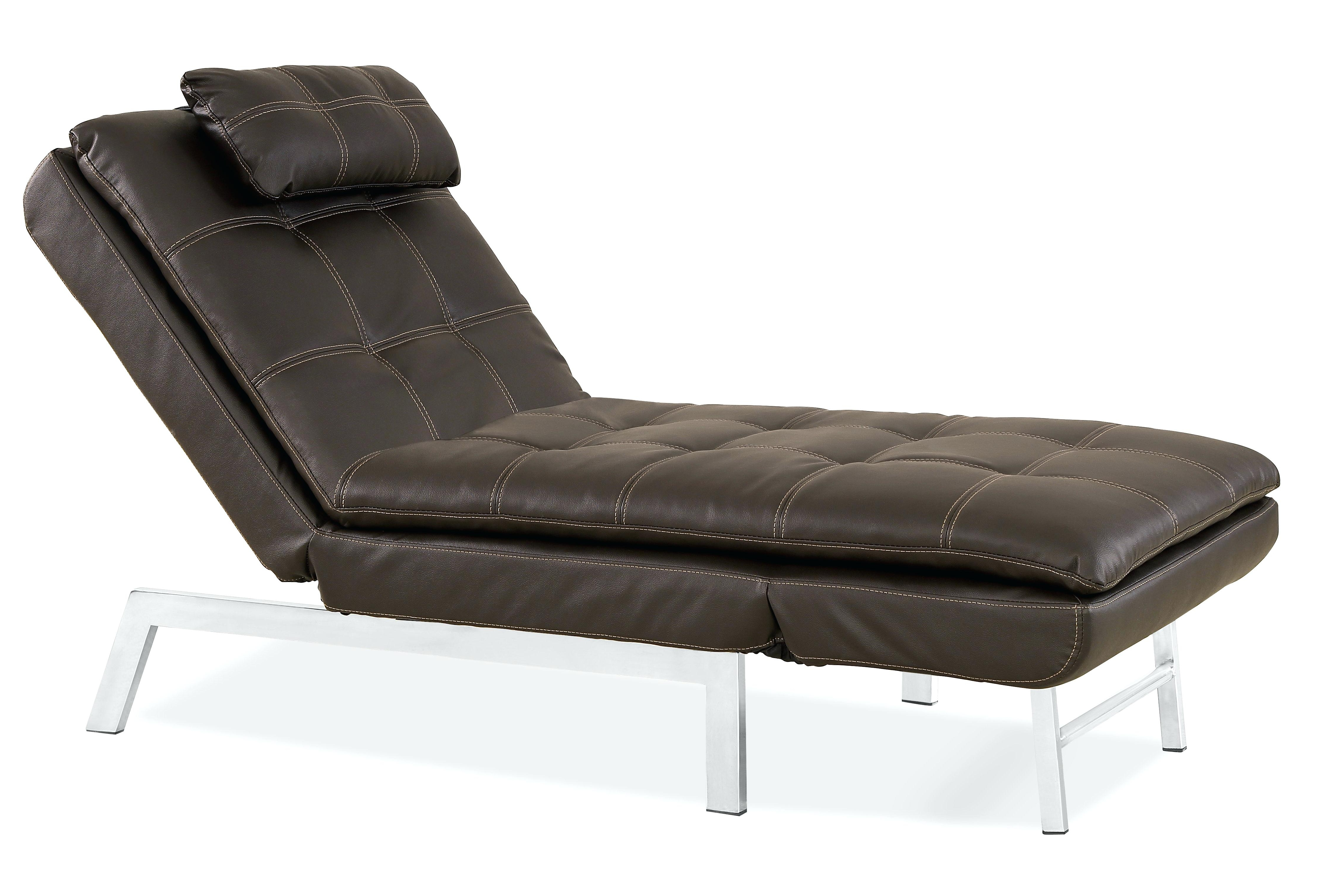 Reclining Chaise Lounge With Arms Chairs – Kharkovnews Pertaining To Favorite Reclining Chaise Lounge Chairs (View 13 of 15)