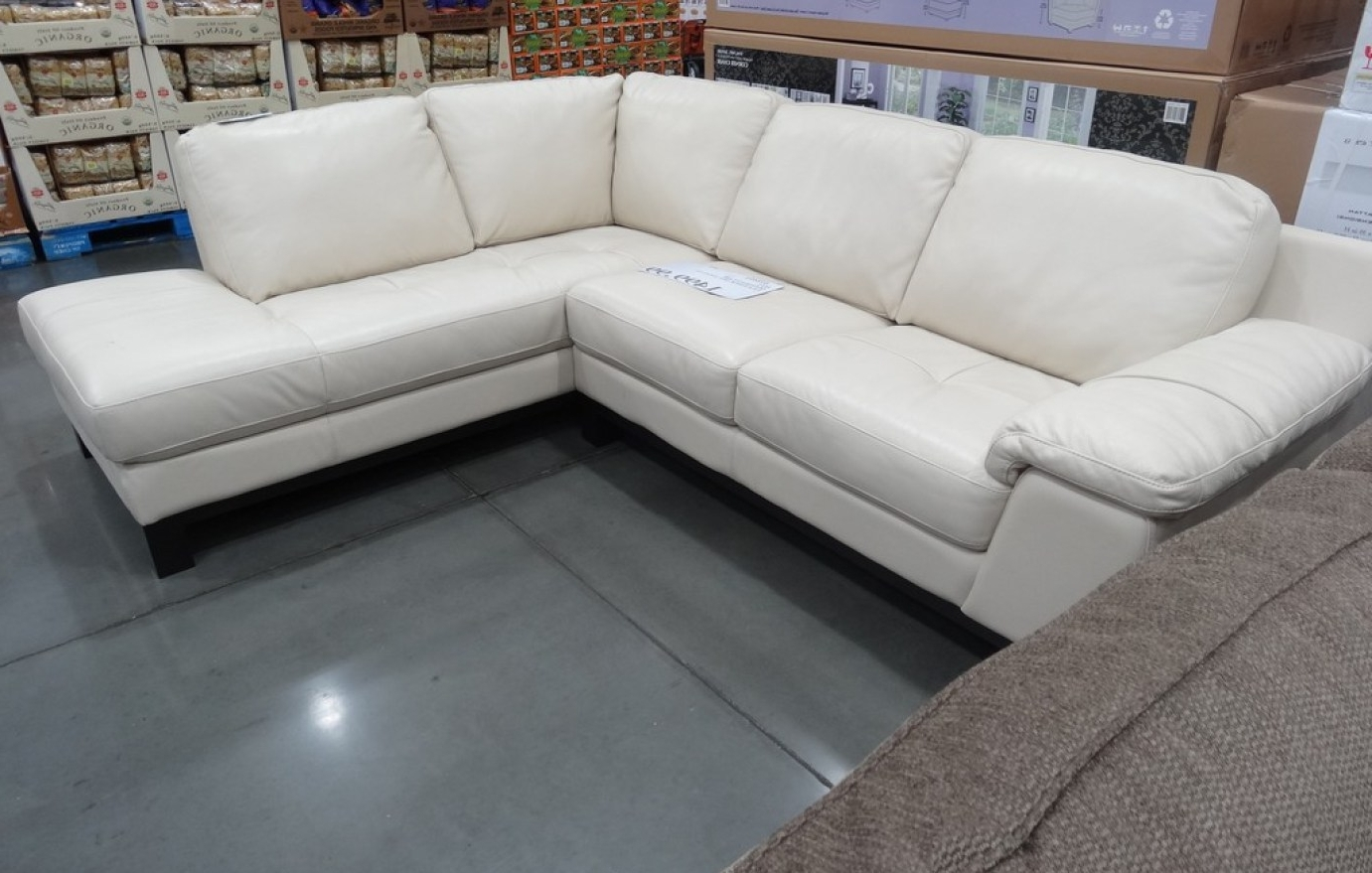 Sectional Sofas At Costco Throughout Newest Costco Sectional Sleeper Sofa – Nrhcares (View 8 of 15)