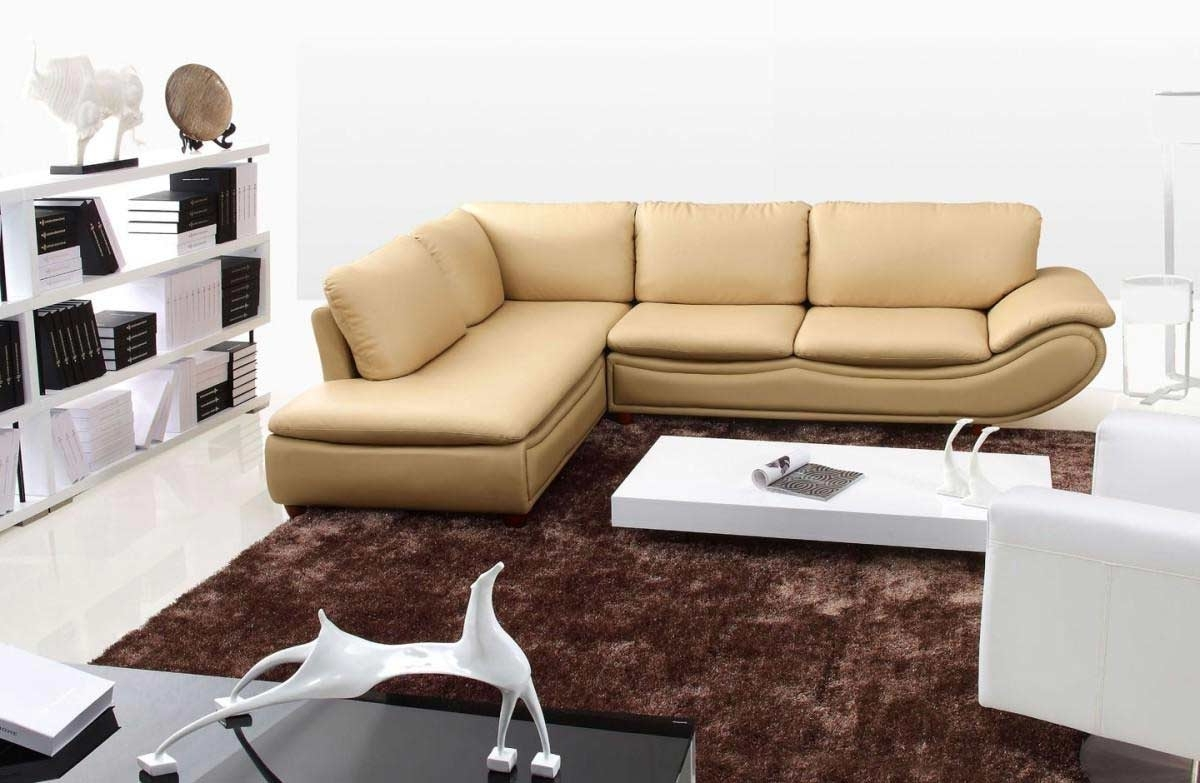 Sectional Sofas For Small Places Pertaining To Famous Beauty Leather Sectional Sofas : Modern Contemporary Sectional (View 13 of 15)