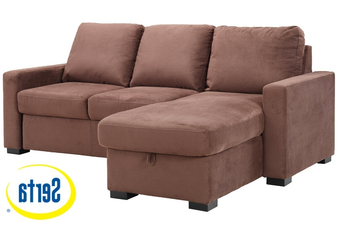 Sleeper Sofa Chaises Regarding Most Recently Released Brown Futon Sofa Sleeper (View 5 of 15)