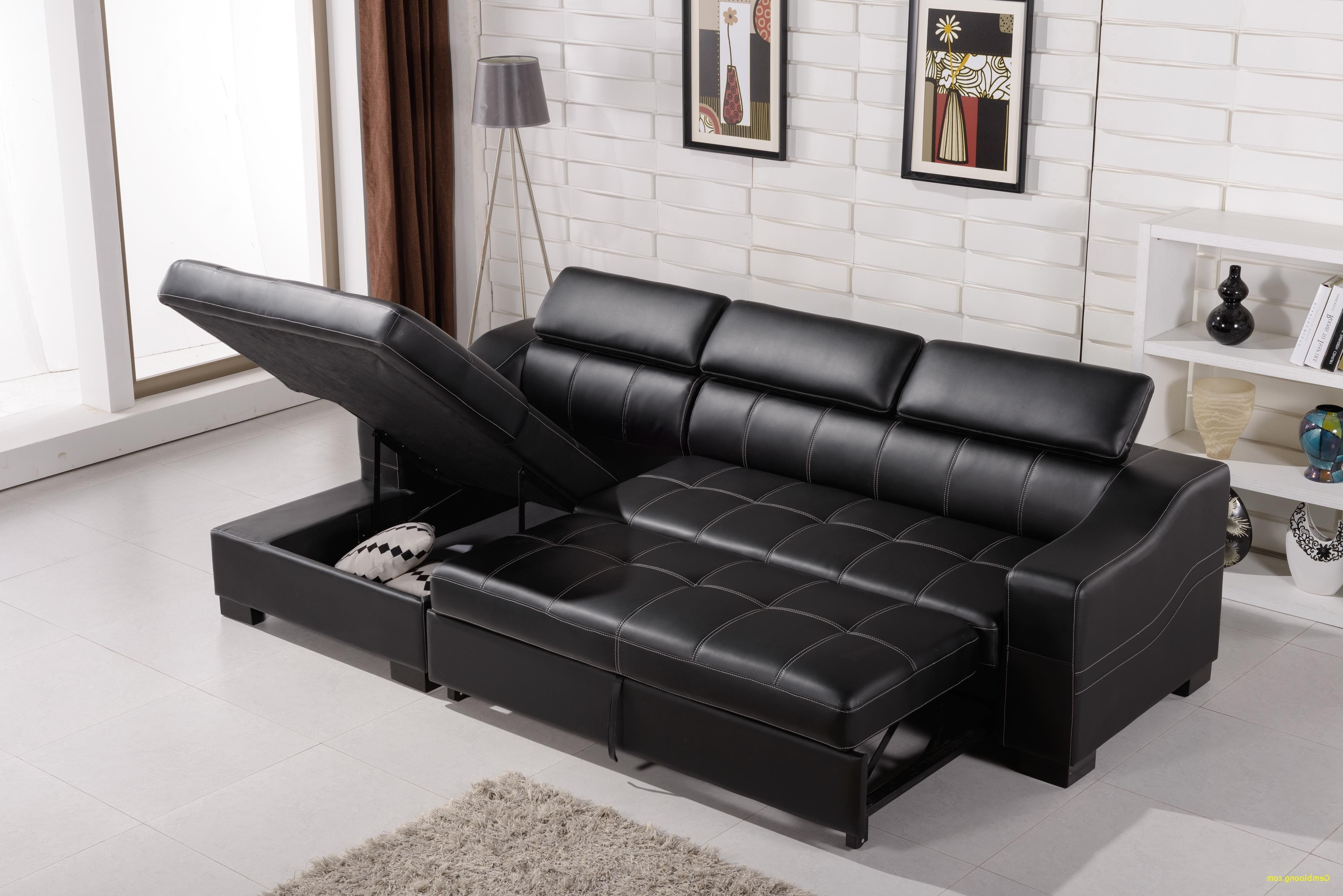 Sleeper Sofa With Storage Chaise Inspirational Incognito Sectional Intended For 2017 Sleeper Sofas With Storage Chaise (View 6 of 15)