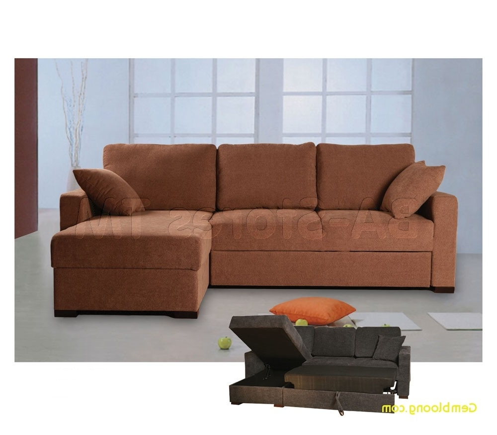 Sleeper Sofas With Storage Chaise With Regard To Most Up To Date Sleeper Sofa With Storage Chaise Inspirational Incognito Sectional (View 9 of 15)