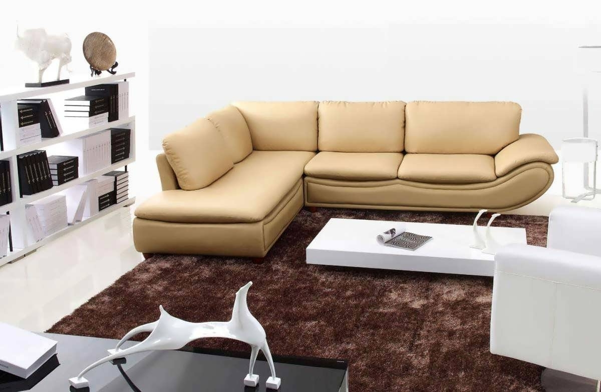 Small Chaise Sectionals In Latest Sofa : Sectional Furniture Grey Sectional Curved Sofa Small Chaise (View 7 of 15)