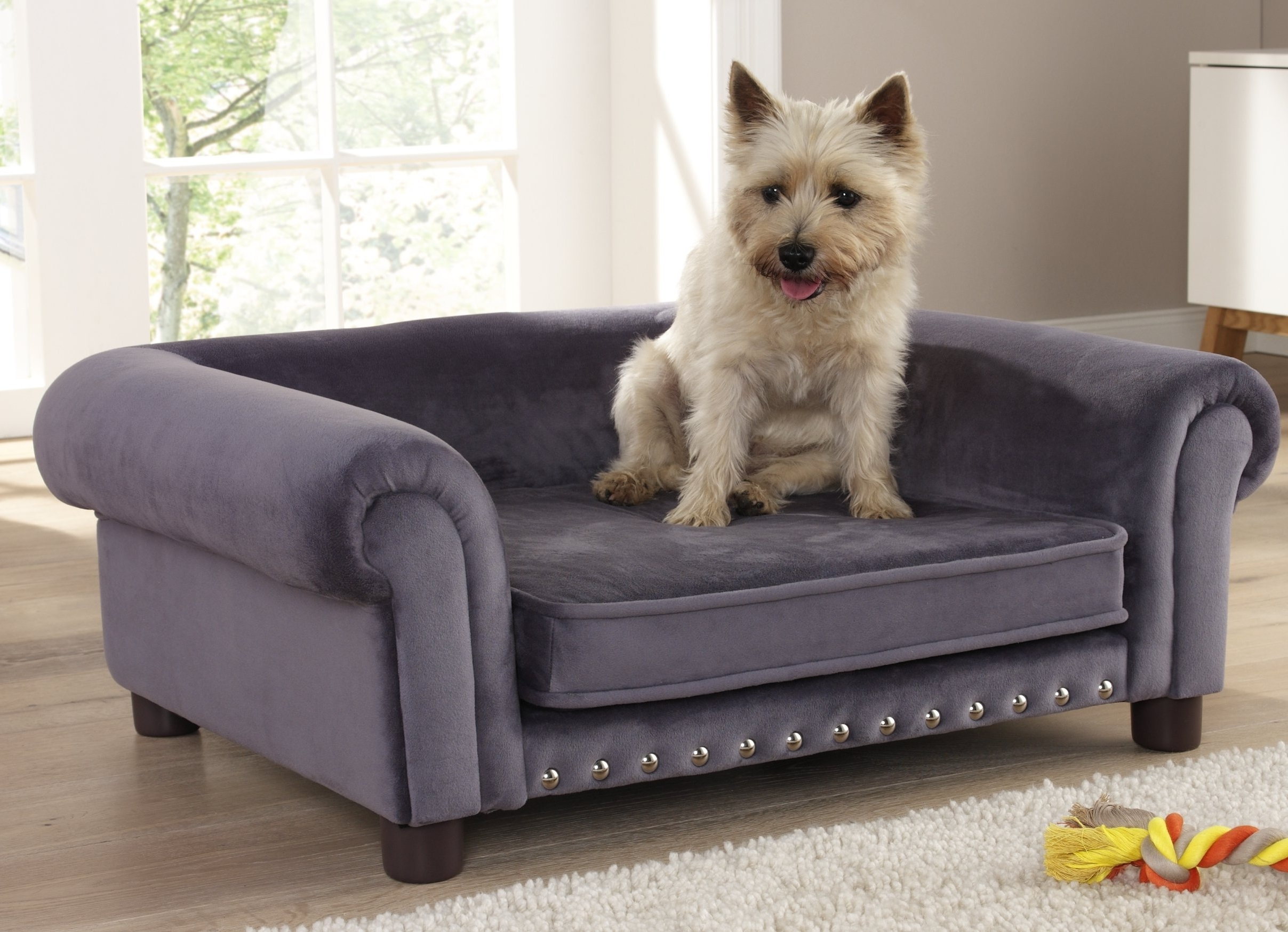 Sofas : Pet Settee Dog Sofas And Chairs Dog Settee Dog Chaise Within Trendy Dog Chaise Lounges (View 14 of 15)