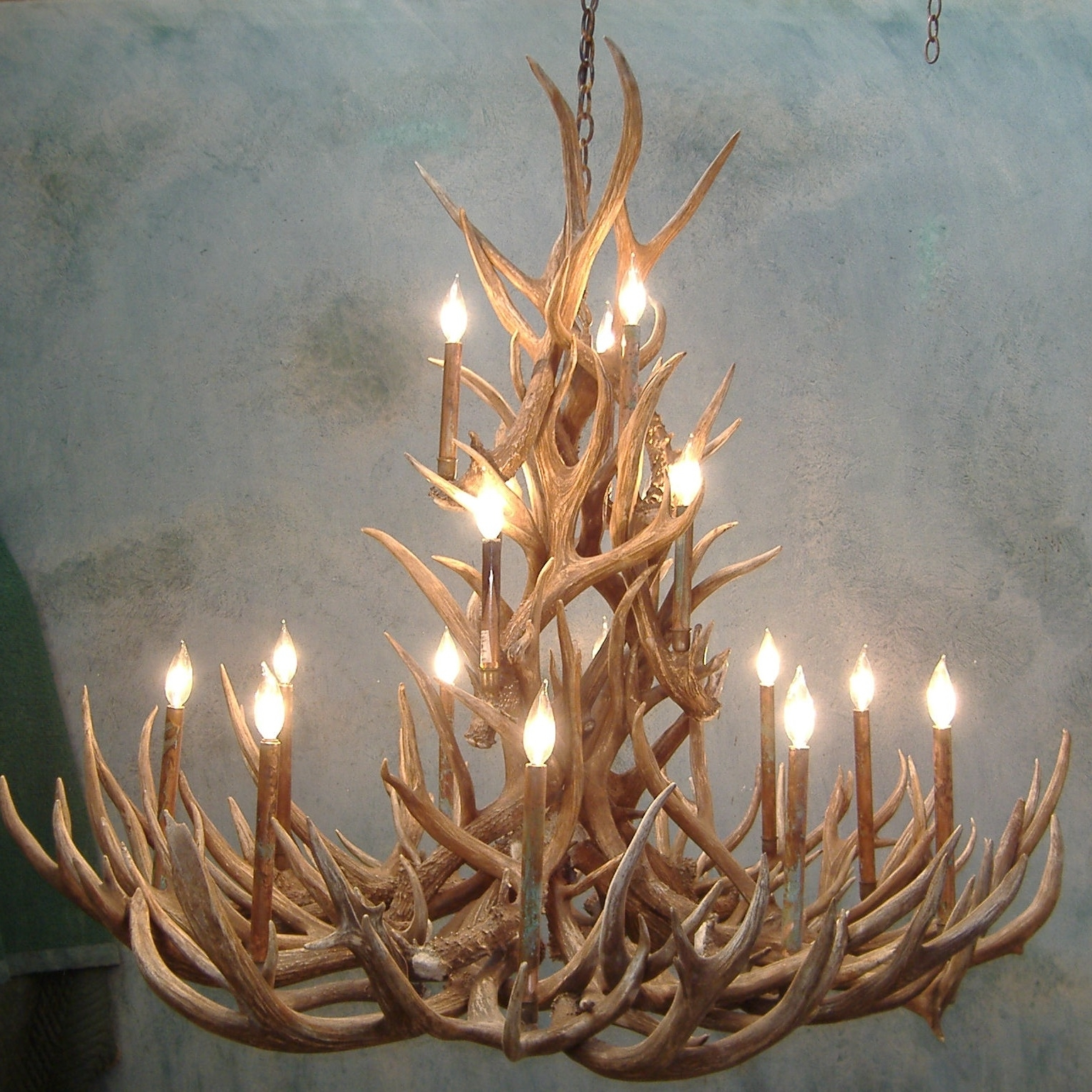 Spruce Mule Deer Antler Chandelier Intended For Most Recent Antlers Chandeliers (View 12 of 15)