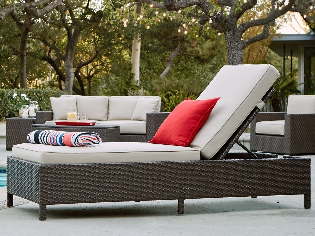 Storage Chaise Lounges Throughout Most Up To Date Serta At Home Laguna Outdoor Storage Chaise Lounge & Reviews (View 12 of 15)