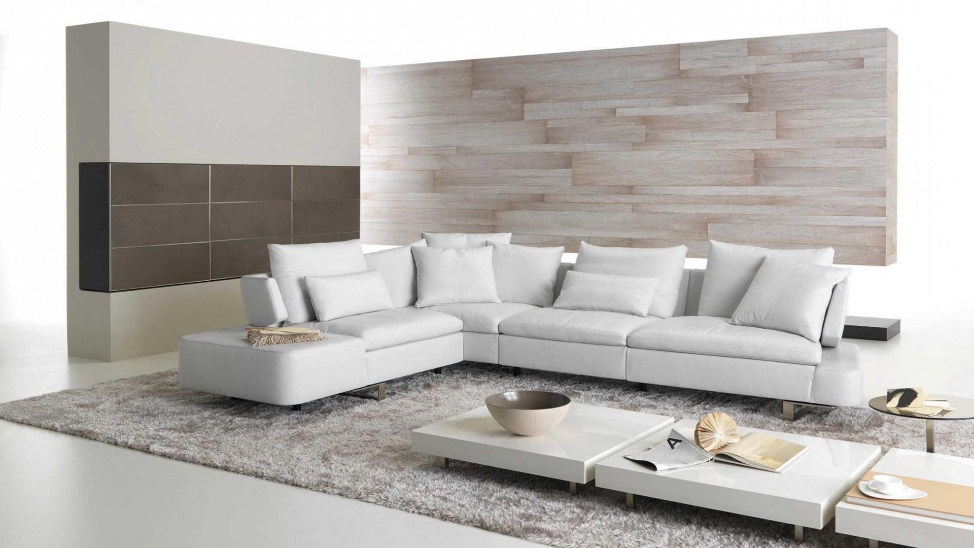 Trendy Elegant Natuzzi Sectional Sofa (32 Photos) (View 12 of 15)