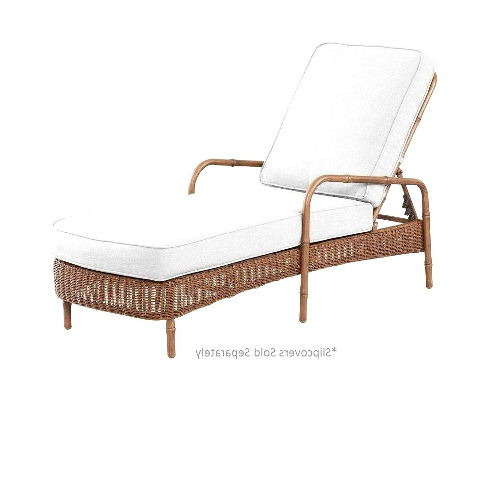 Trendy Hampton Bay Chaise Lounges For 25 Inspirational Hampton Bay Chaise Lounge Design – Lounge Chair Ideas (View 14 of 15)