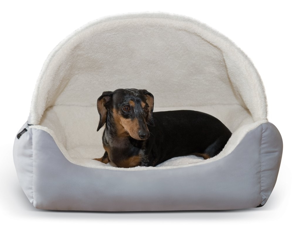 Wayfair Pertaining To Dog Chaise Lounges (View 15 of 15)
