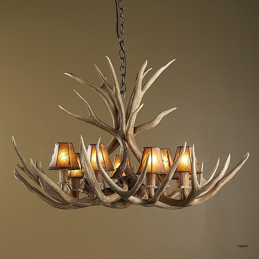 Well Known Antlers Chandeliers Intended For Holder Deer Antler Candle Holders Lovely Authentic 8 Light Deer (View 13 of 15)