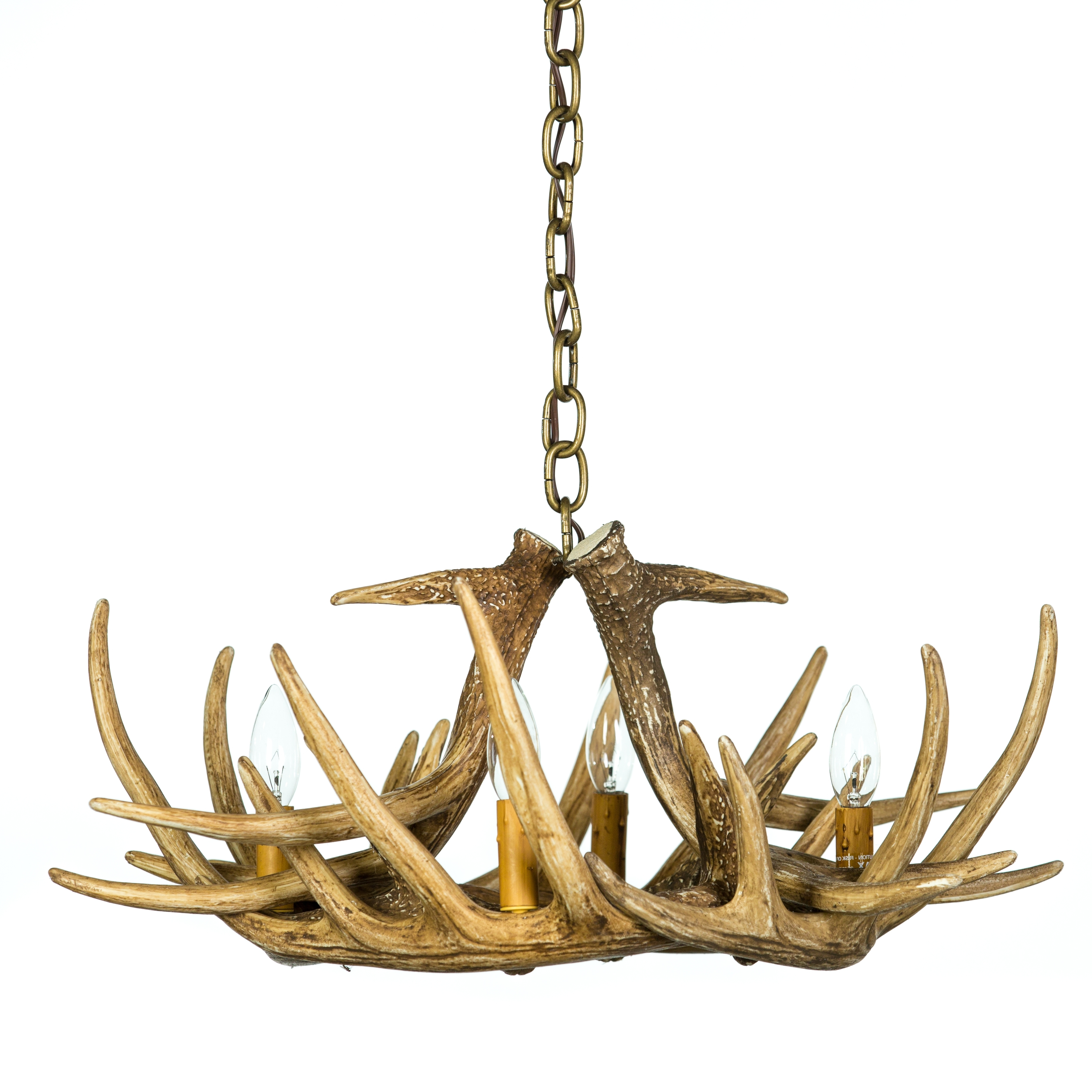 Whitetail Deer 6 Antler Chandelier (View 8 of 15)