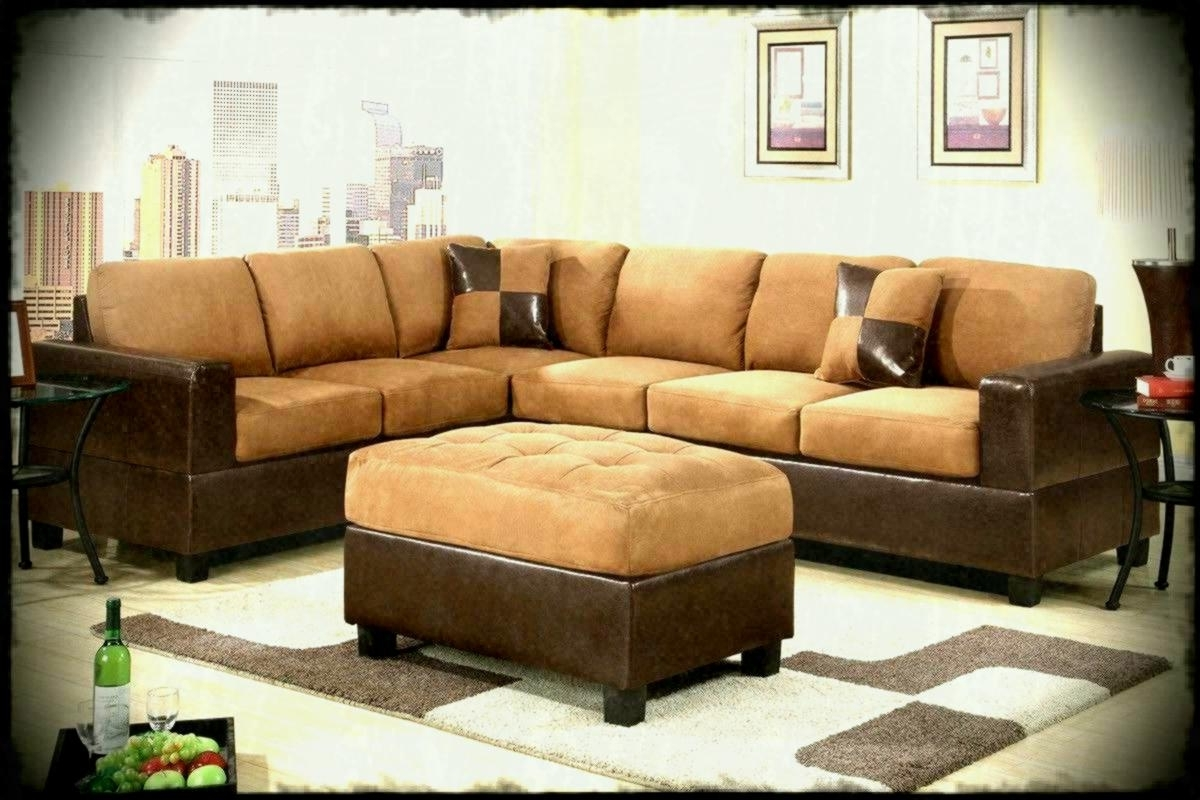 Widely Used Furniture Couches Sleeper Sectional Sofa Big Lots Sofas And Regarding Roanoke Va Sectional Sofas (View 15 of 15)