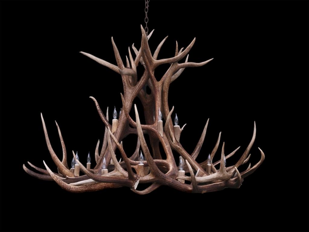 Antler Furniture Antler Chandeliers Antler Lamp Deer Antler Intended For Recent Large Antler Chandelier (View 9 of 15)