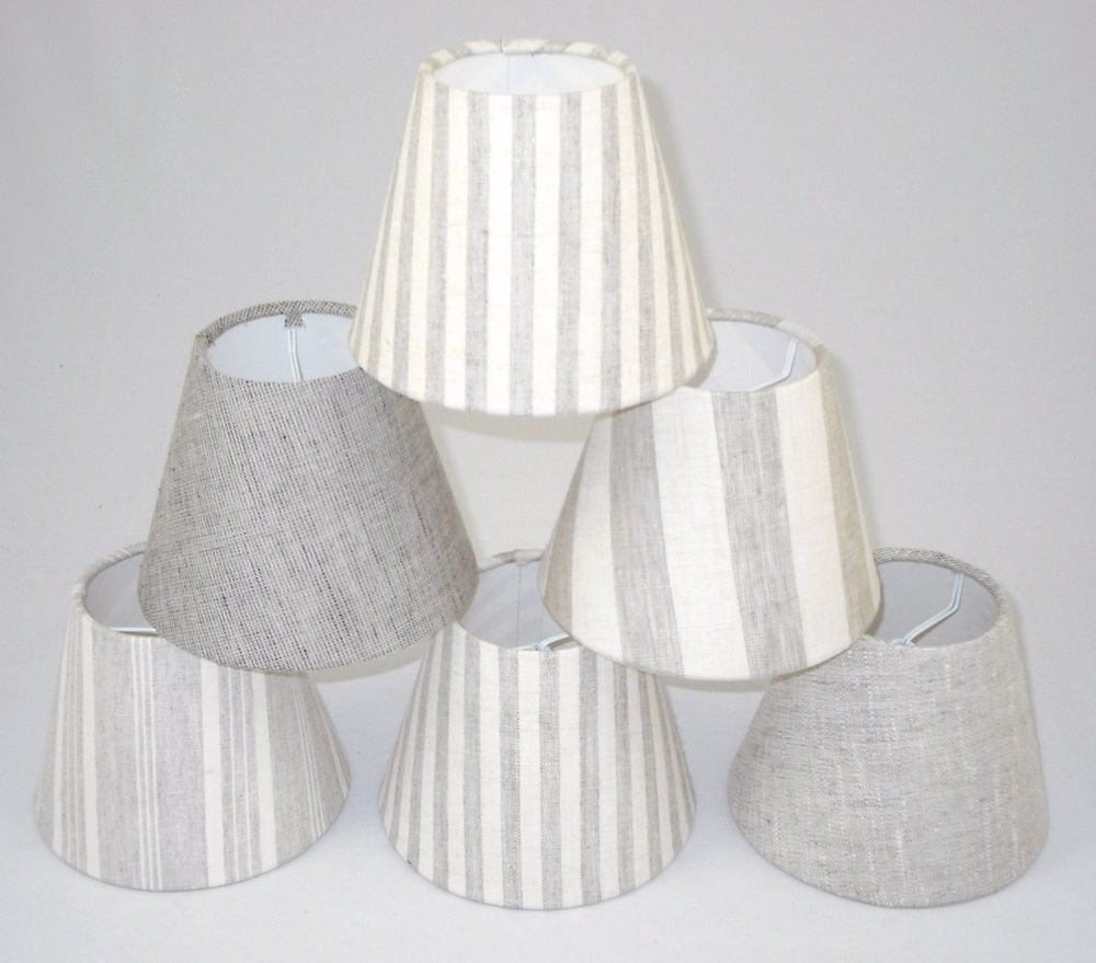 Favorite Small Chandelier Lamp Shades For Lamp Shades Small Master Of Lamp And Lighting – Aguasomos (View 4 of 15)