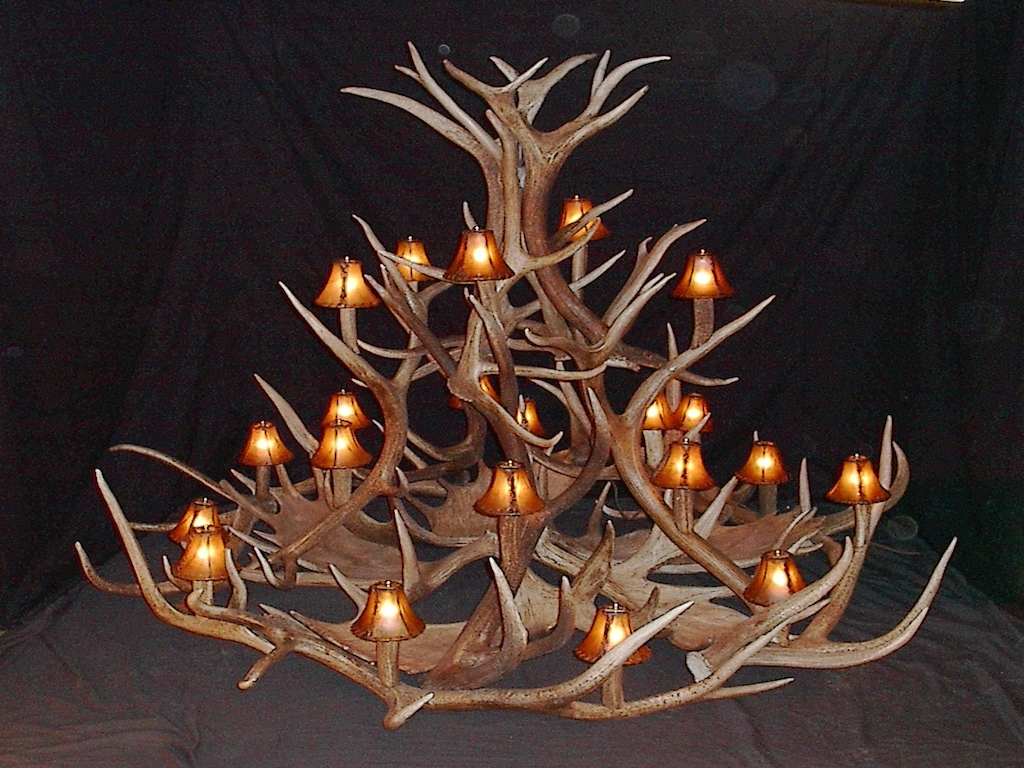 Large Antler Chandelier In Fashionable Antler Furniture Antler Chandeliers Antler Lamp Deer Antler (View 3 of 15)