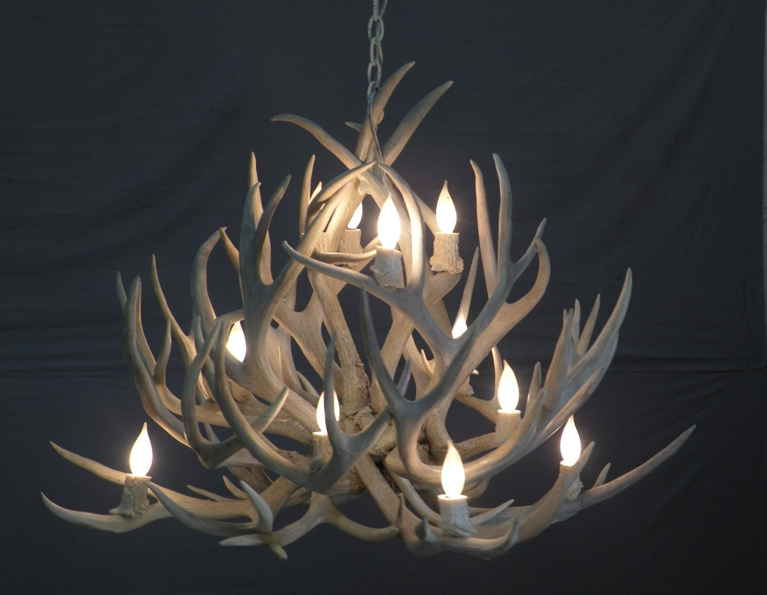 Modern Antler Chandelier Pertaining To Favorite Lamps: Antler Chandelier 6 Light Large Antler Chandelier Uk Lucite (View 1 of 15)