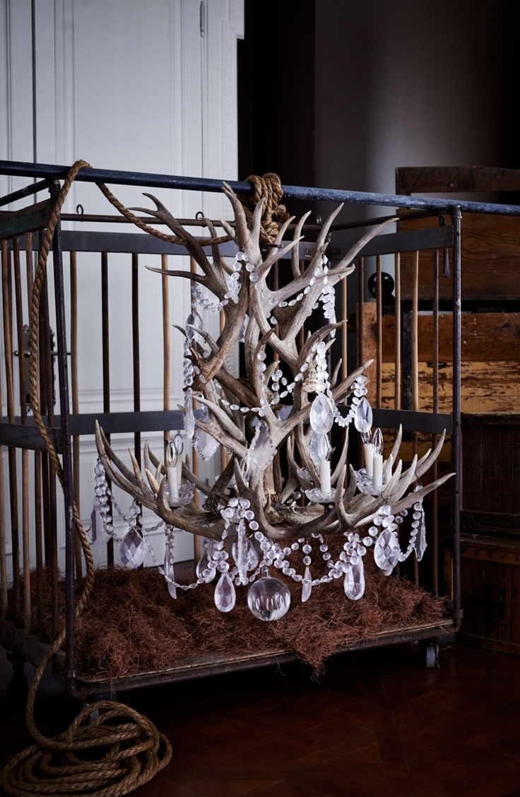 Ralph Lauren Home's Stag Chandelier Combines Naturally Shed Antlers With Regard To 2018 Stag Horn Chandelier (View 6 of 15)