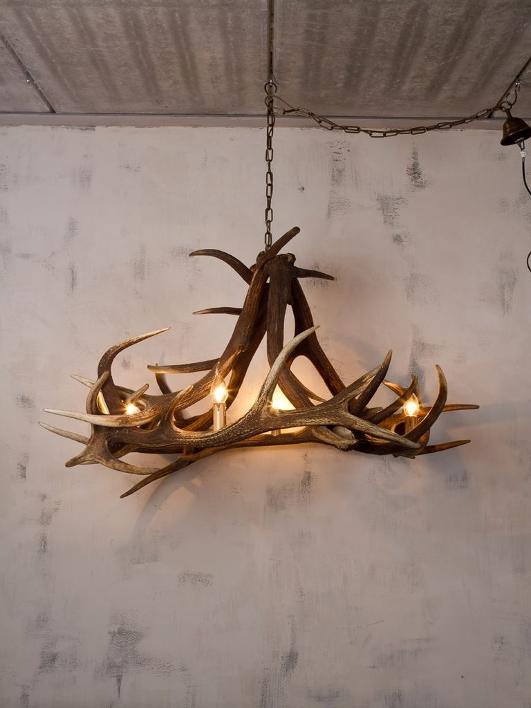 Featured Photo of Stag Horn Chandelier
