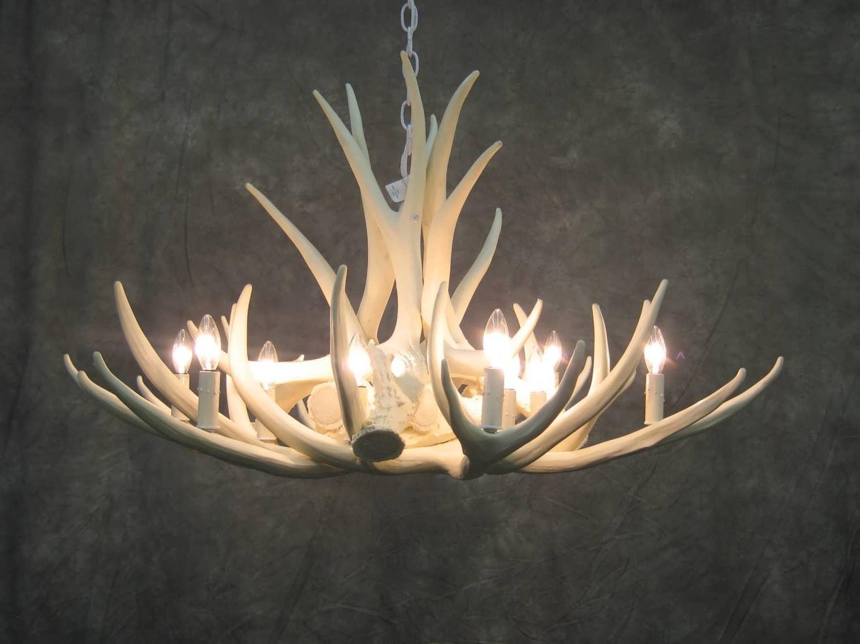 Trendy Chandelier : Rustic Lighting Tiffany Chandelier Stag Horn Chandelier In Stag Horn Chandelier (View 13 of 15)