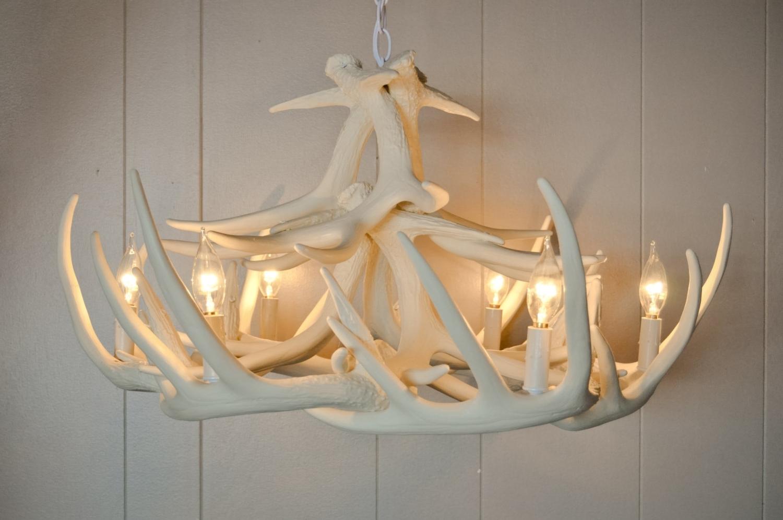 Trendy Chandeliers Design : Marvelous Elk Antler Chandelier Deer Light Within White Antler Chandelier (View 7 of 15)