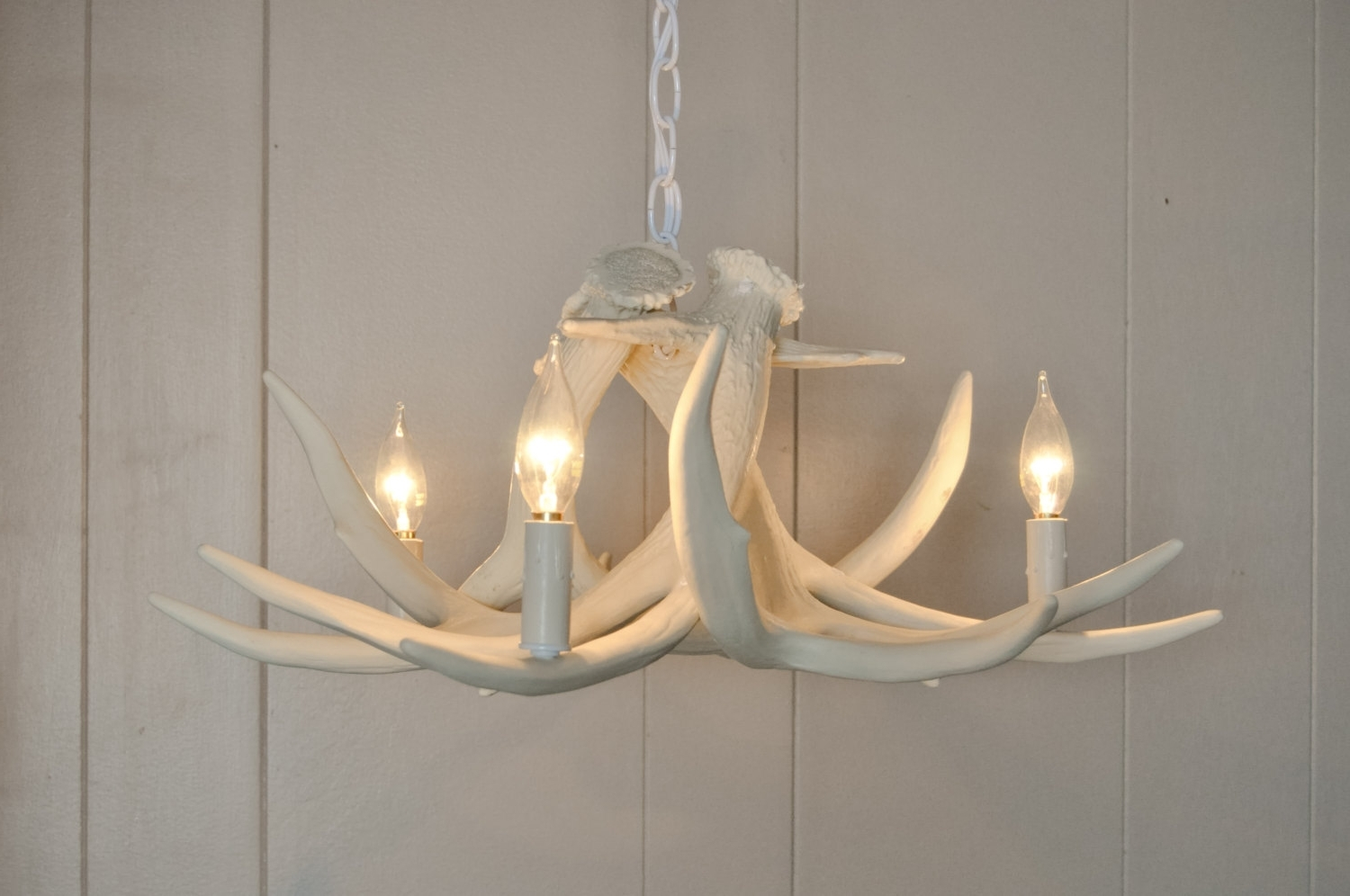 Turquoise Antler Chandeliers Intended For Fashionable White Antler Chandelier – Nurani (View 10 of 15)