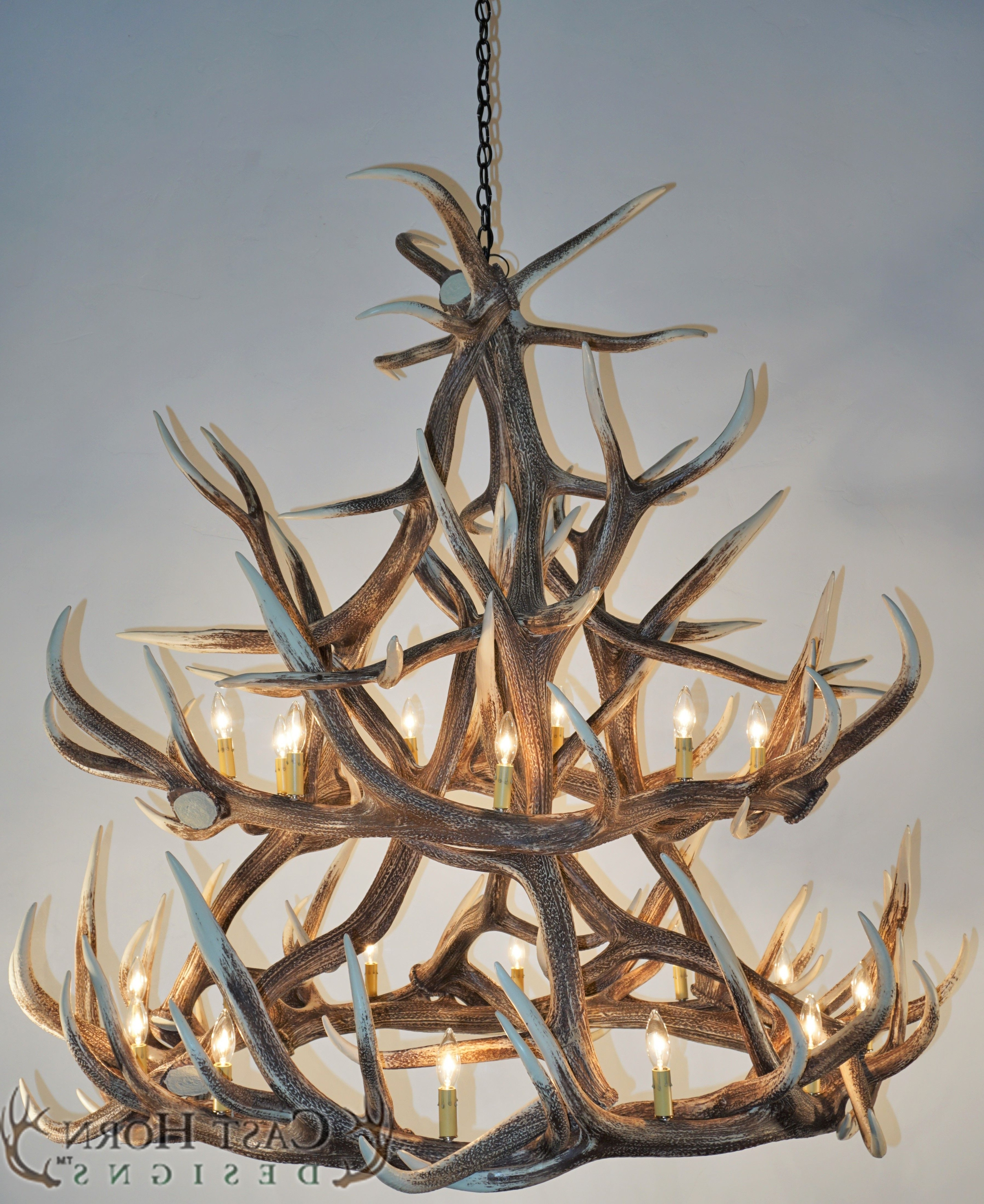 White Antler Chandelier In Most Up To Date Chandeliers : White Antler Chandelier Inspirational Lighting Elk (View 9 of 15)