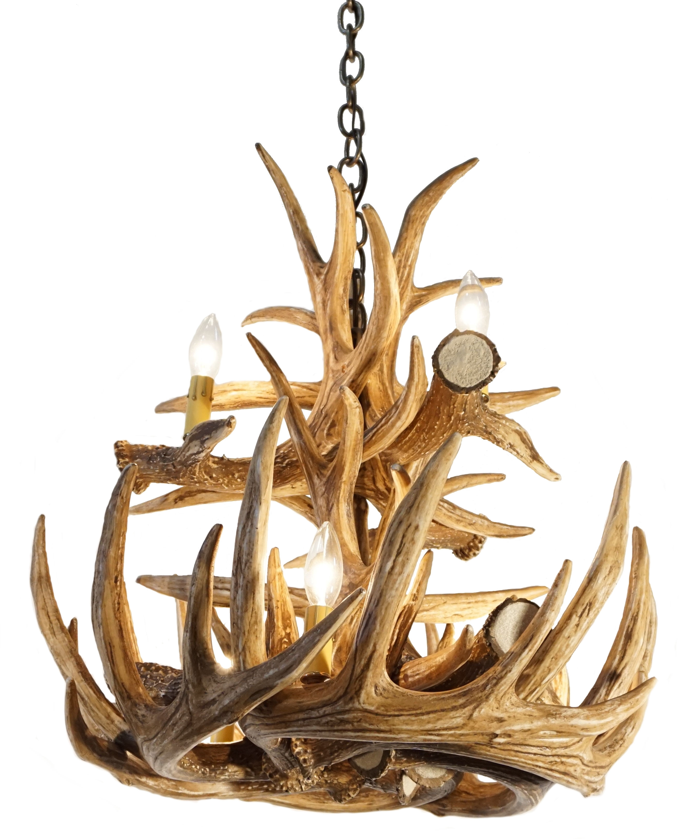 Whitetail Deer 12 Large Antler Chandelier (View 7 of 15)