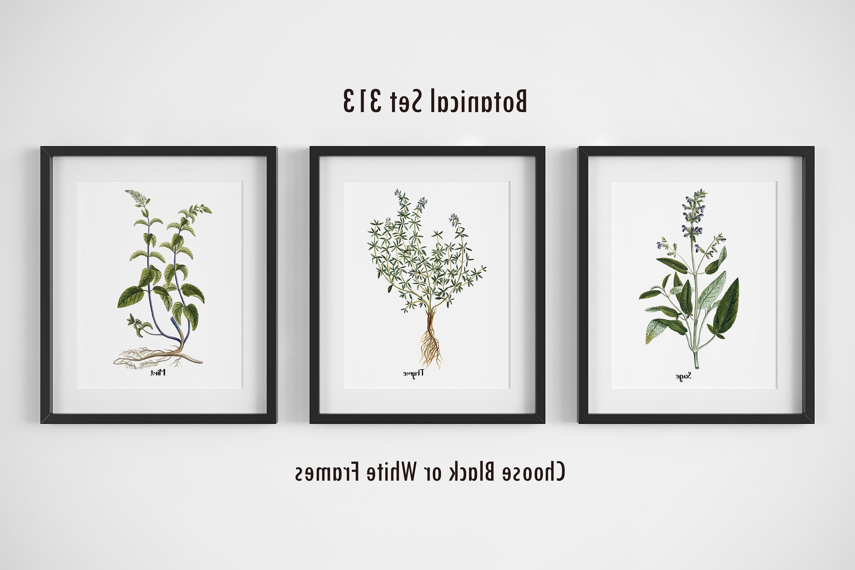 2017 Herb Wall Art Within Botanical Prints, Set Of 3, Framed Wall Art, Farmhouse Wall Decor (View 14 of 15)
