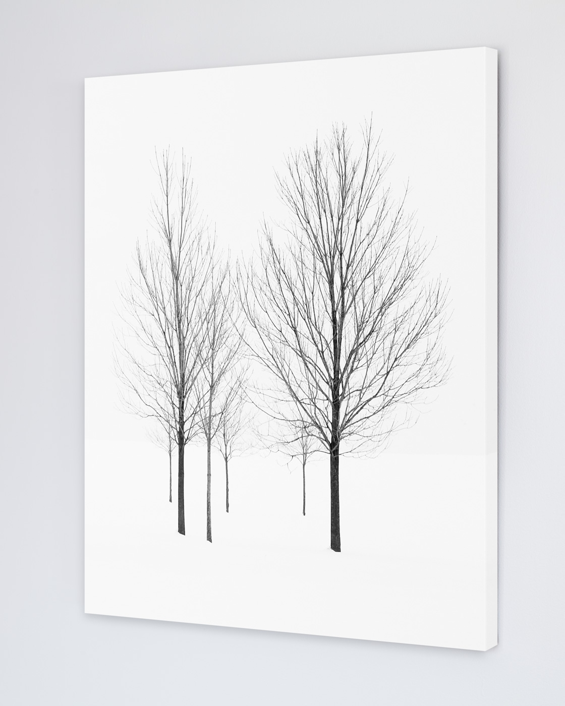 Art For Walls With Most Current Tree Art For Walls – Elviage Pearl – Winter Landscape Photography (View 5 of 15)