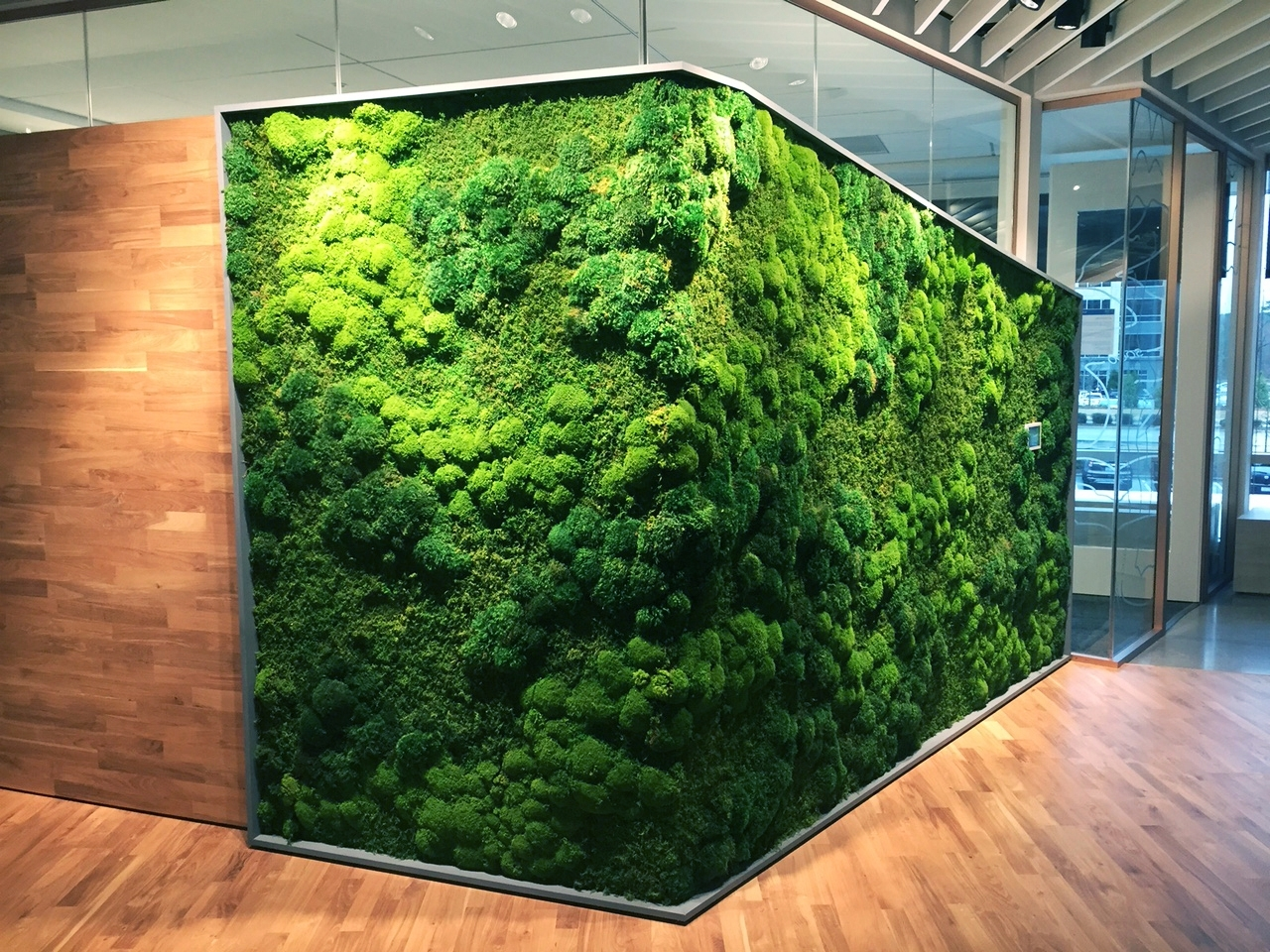 Best And Newest Moss Wall Art In Plant Wall Art Commercial Image Galleryartisan Moss (View 7 of 15)