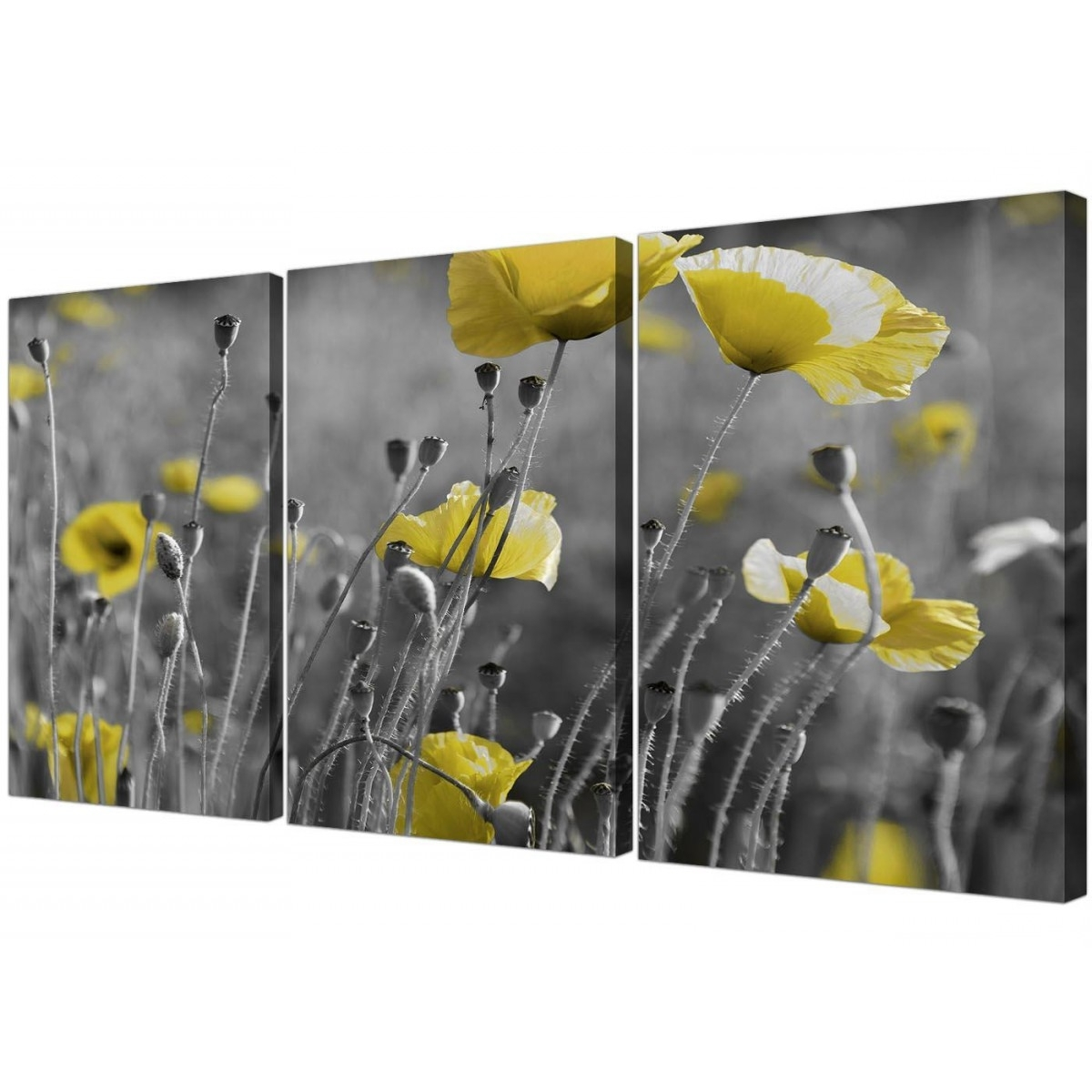 Black And White Canvas With Grey And Yellow Poppies Wall Art Prints Throughout Favorite Yellow And Grey Wall Art (View 3 of 15)